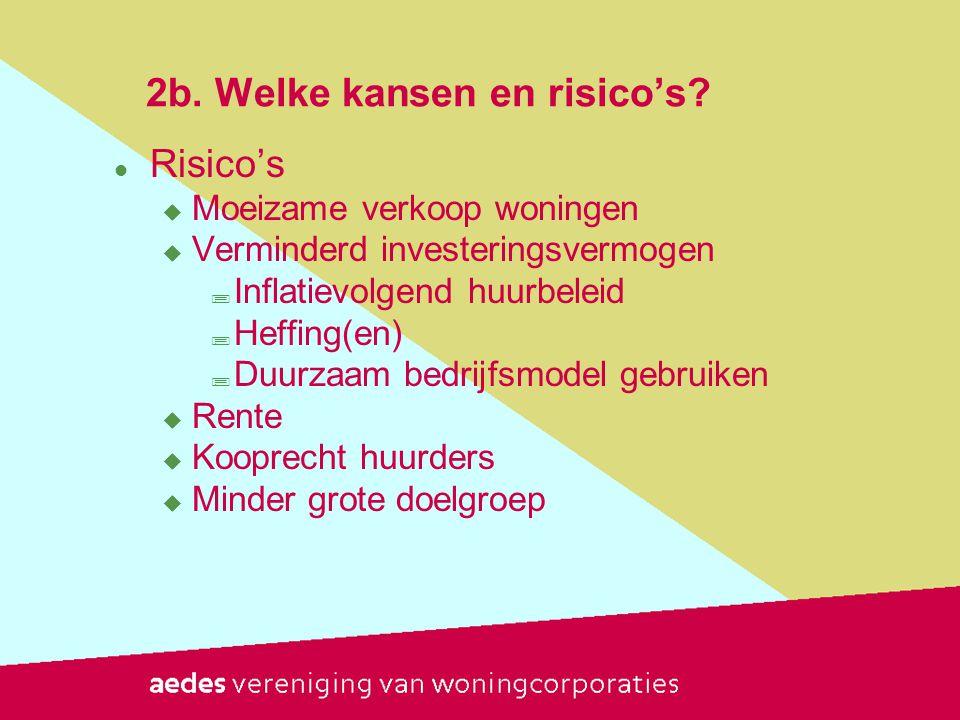 2b.Welke kansen en risico's.