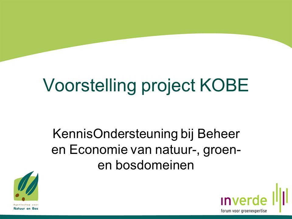 Interne resources Projectwerking Oproep tot actieve betrokkenheid bij deelprojecten van KOBE: celhoofden, regiobeheerders, wachters Gerichte vragen i.f.v.