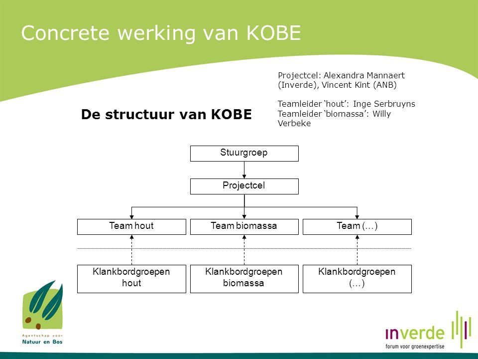 Concrete werking van KOBE De structuur van KOBE Stuurgroep Projectcel Team houtTeam biomassaTeam (…) Klankbordgroepen hout Klankbordgroepen biomassa K