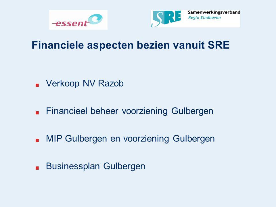 Financiele aspecten bezien vanuit SRE  Verkoop NV Razob  Financieel beheer voorziening Gulbergen  MIP Gulbergen en voorziening Gulbergen  Business