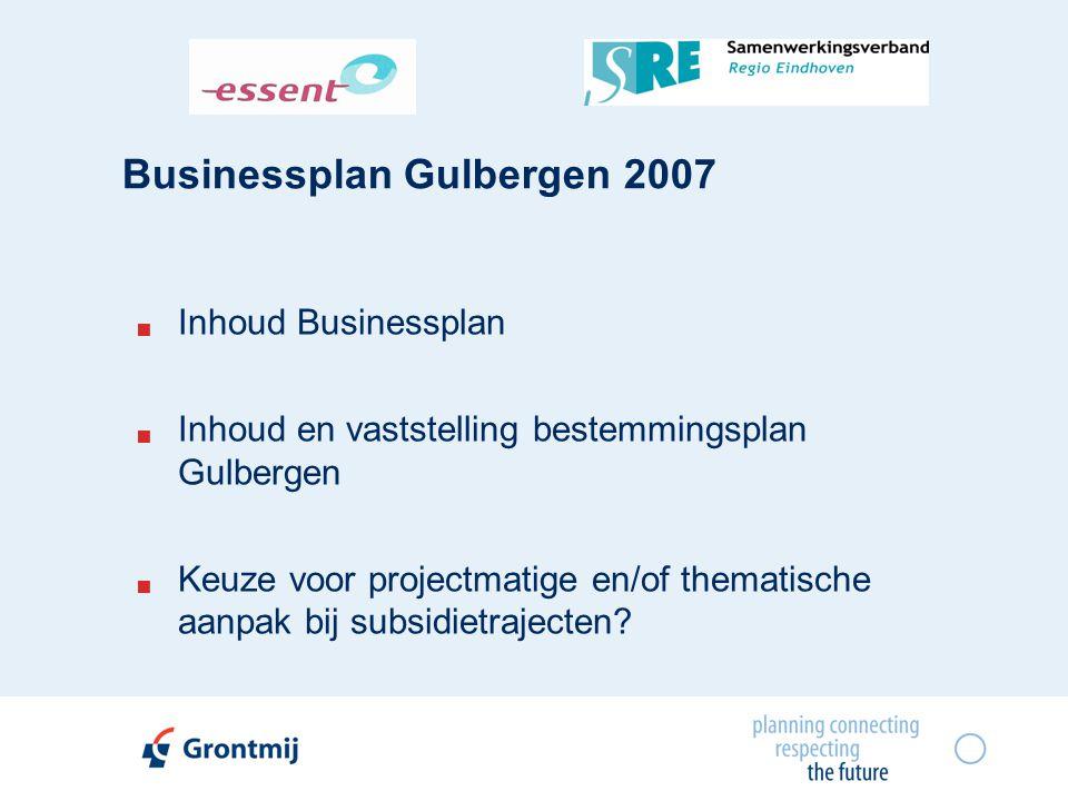 Businessplan Gulbergen 2007  Inhoud Businessplan  Inhoud en vaststelling bestemmingsplan Gulbergen  Keuze voor projectmatige en/of thematische aanp