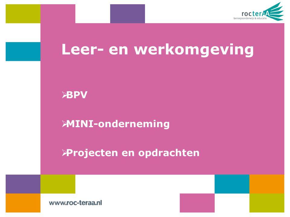 Leer- en werkomgeving  BPV  MINI-onderneming  Projecten en opdrachten