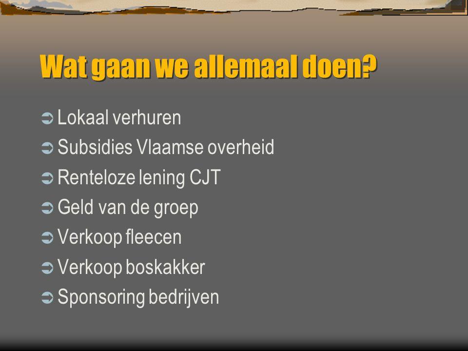 Wat gaan we allemaal doen?  Lokaal verhuren  Subsidies Vlaamse overheid  Renteloze lening CJT  Geld van de groep  Verkoop fleecen  Verkoop boska