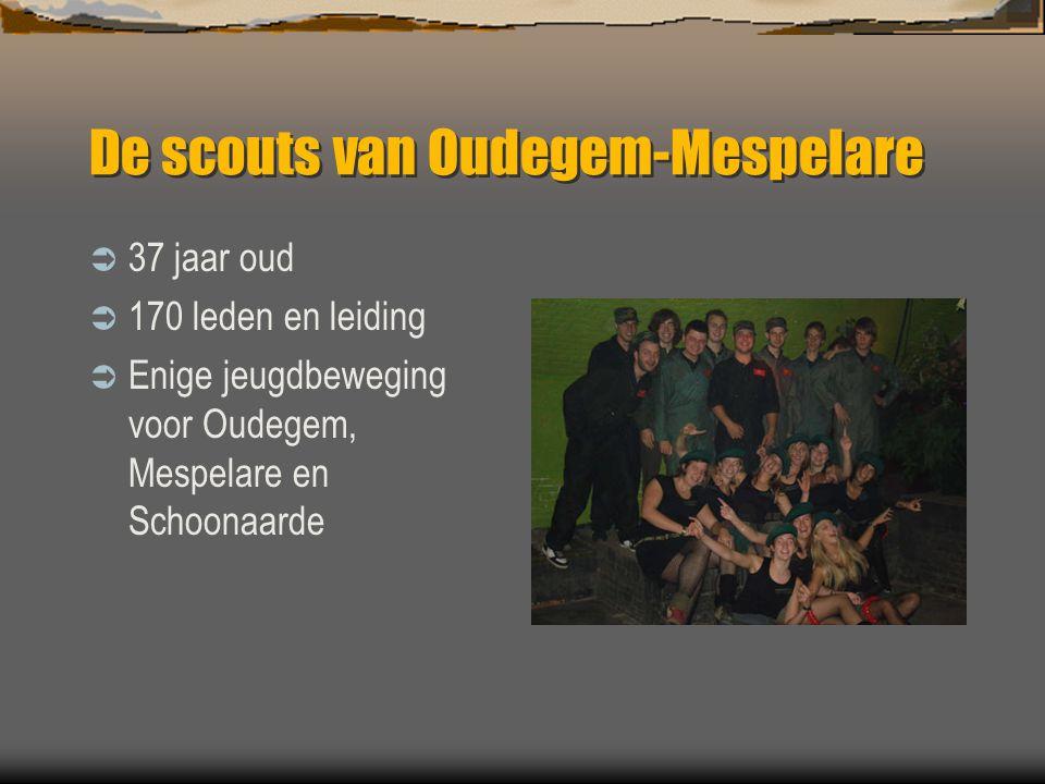 De scouts van Oudegem-Mespelare  Derde grootste jeugdbeweging van Dendermonde  Derde grootste scoutsgroep van ons district  Honderden sympathisanten