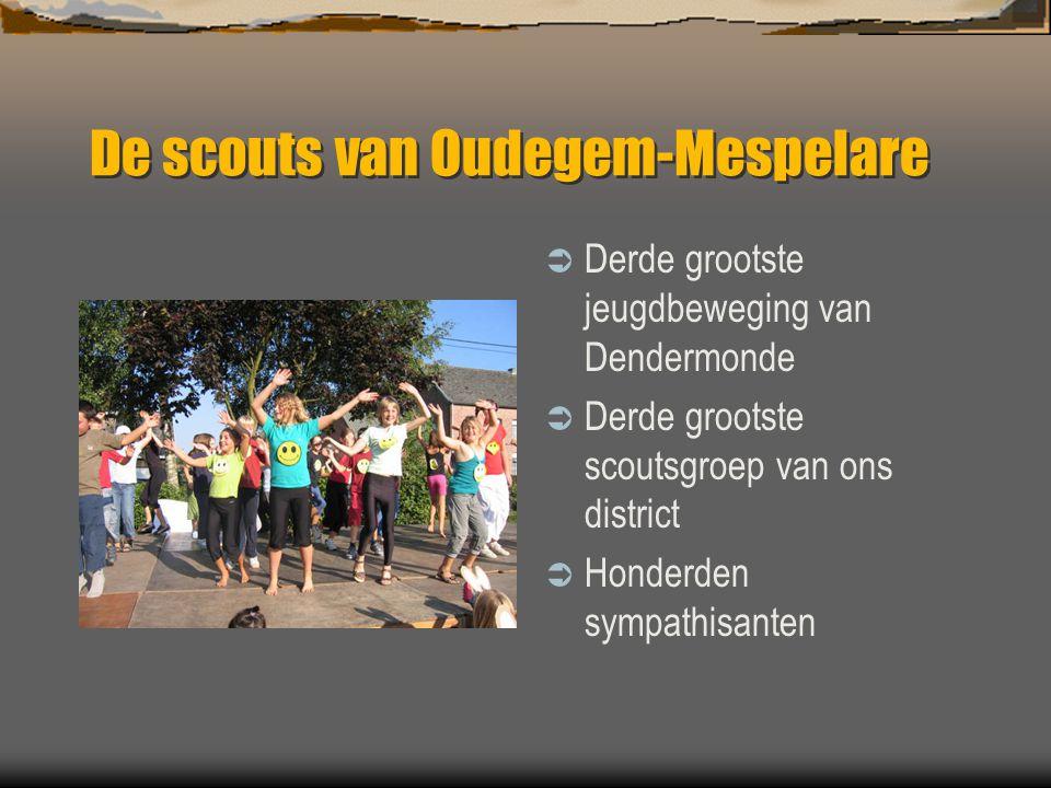 De scouts van Oudegem-Mespelare  Derde grootste jeugdbeweging van Dendermonde  Derde grootste scoutsgroep van ons district  Honderden sympathisante