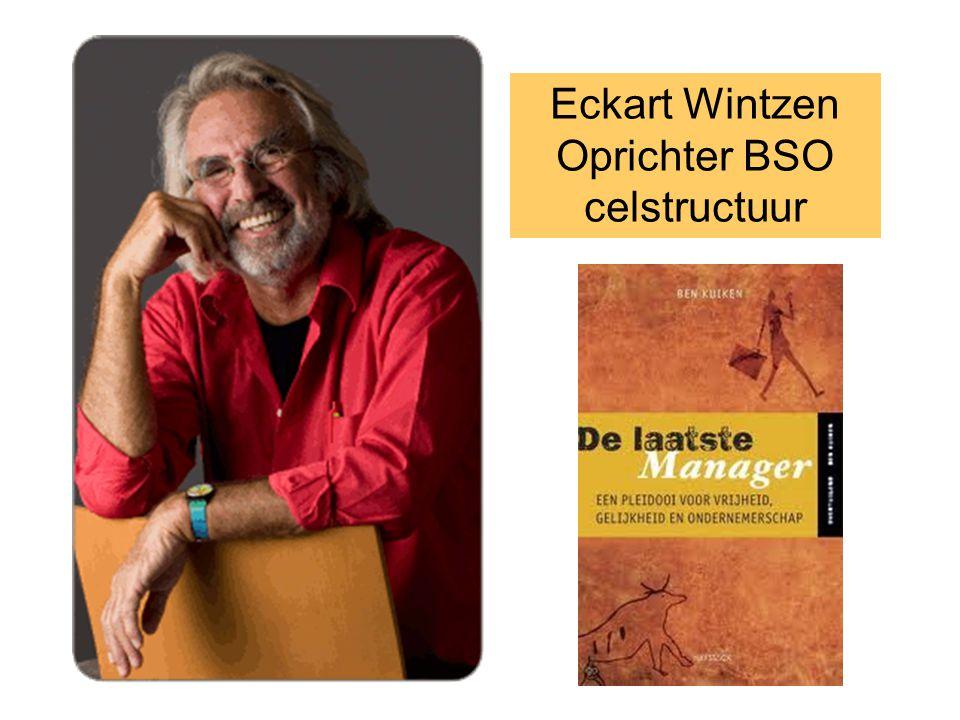 Eckart Wintzen Oprichter BSO celstructuur