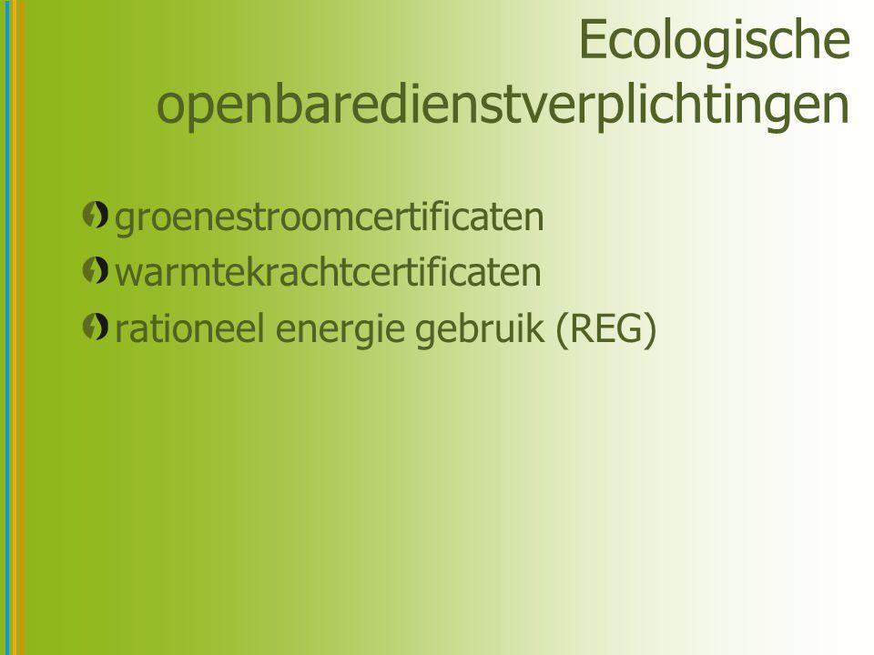 Rationeel Energie Gebruik (REG) verplichting voor netbeheerders –jaarlijkse verplichte primaire energiebesparing van 1% –REG-actieplannen –sensibiliseren –stimuleren van energiebesparing (premies,…) –opvolging door het Vlaams EnergieAgentschap (VEA) verplichting voor leveranciers –factuur –melding jaarlijks elektriciteitsverbruik van de laatste 3 jaar –melding van de oorsprong van de elektriciteit