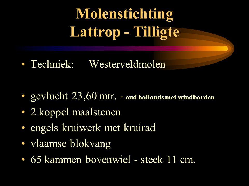 Molenstichting Lattrop - Tilligte • Westerveldmolen: • 8 - kant rietgedekt • beltmolen • buitenkruier