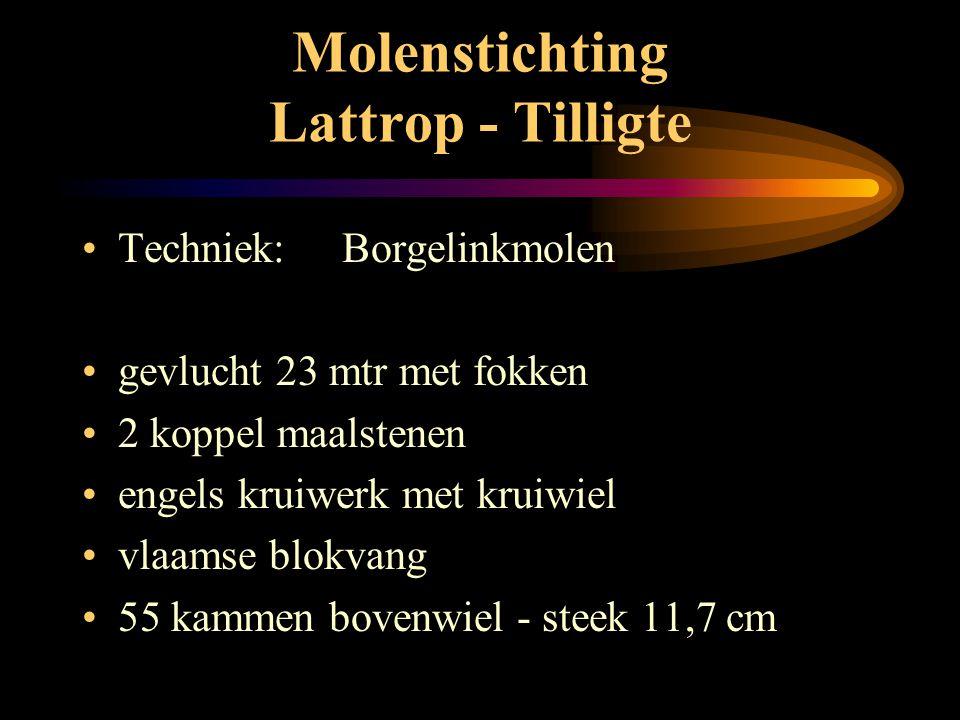 Molenstichting Lattrop - Tilligte • Borgelinkmolen: • 8 - kant rietgedekt • stellingmolen • buitenkruier