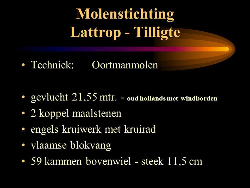 Molenstichting Lattrop - Tilligte • Oortmanmolen: • 8 - kant rietgedekt • stellingmolen • buitenkruier Foto H. de Kroon