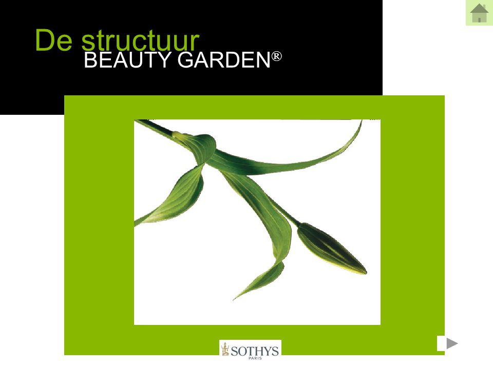 De verzorging in het instituut  de biologische verzorging Beauty Garden ® met VMA™ Verzorging van 40 min met gebruik van de cabine/professionele producten Beauty Garden® In het instituut