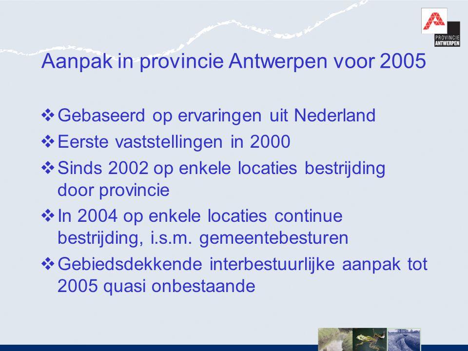 Aanpak in provincie Antwerpen voor 2005  Gebaseerd op ervaringen uit Nederland  Eerste vaststellingen in 2000  Sinds 2002 op enkele locaties bestri