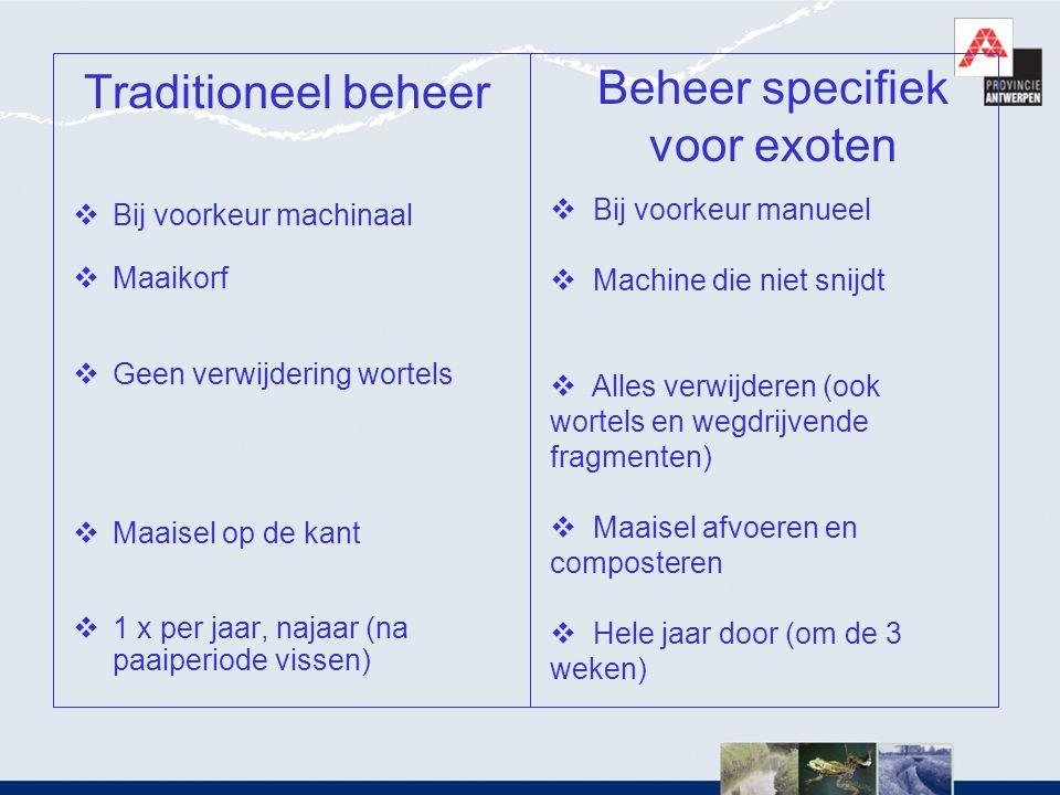 Traditioneel beheer  Bij voorkeur machinaal  Maaikorf  Geen verwijdering wortels  Maaisel op de kant  1 x per jaar, najaar (na paaiperiode vissen