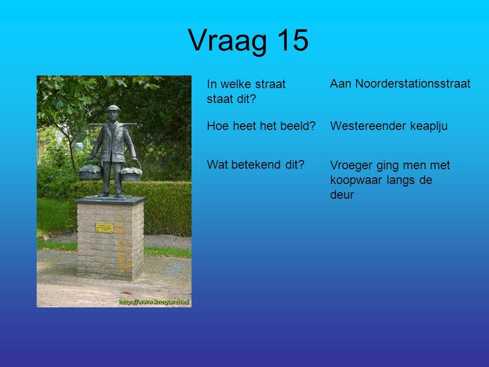 Vraag 15 In welke straat staat dit. Aan Noorderstationsstraat Hoe heet het beeld.