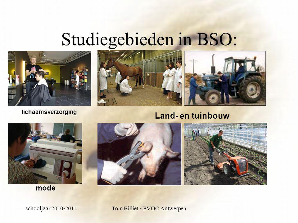 schooljaar 2010-2011Tom Billiet - PVOC Antwerpen Studiegebieden in BSO: Land- en tuinbouw lichaamsverzorging mode