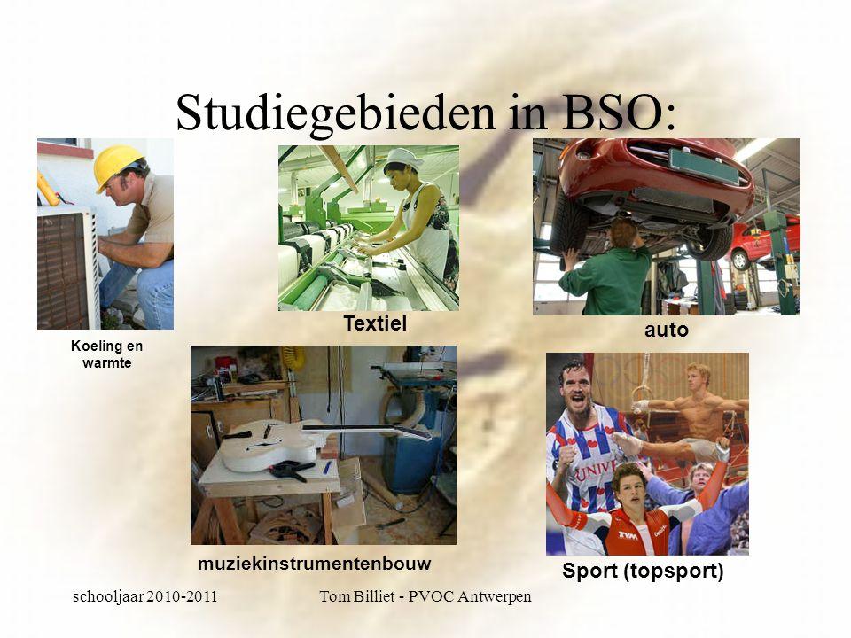 schooljaar 2010-2011Tom Billiet - PVOC Antwerpen Studiegebieden in BSO: Koeling en warmte Textiel muziekinstrumentenbouw auto Sport (topsport)