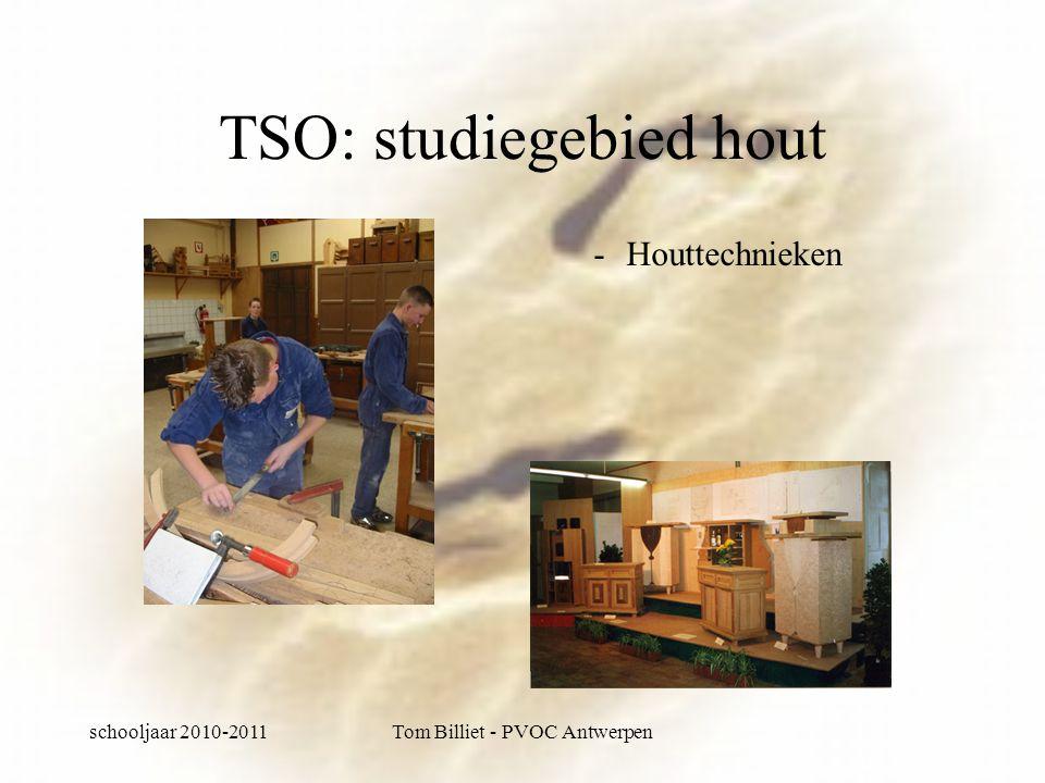 schooljaar 2010-2011Tom Billiet - PVOC Antwerpen TSO: studiegebied hout -Houttechnieken
