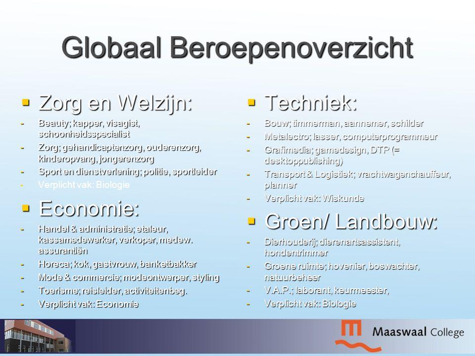 Globaal Beroepenoverzicht  Zorg en Welzijn: -Beauty; kapper, visagist, schoonheidsspecialist -Zorg; gehandicaptenzorg, ouderenzorg, kinderopvang, jon