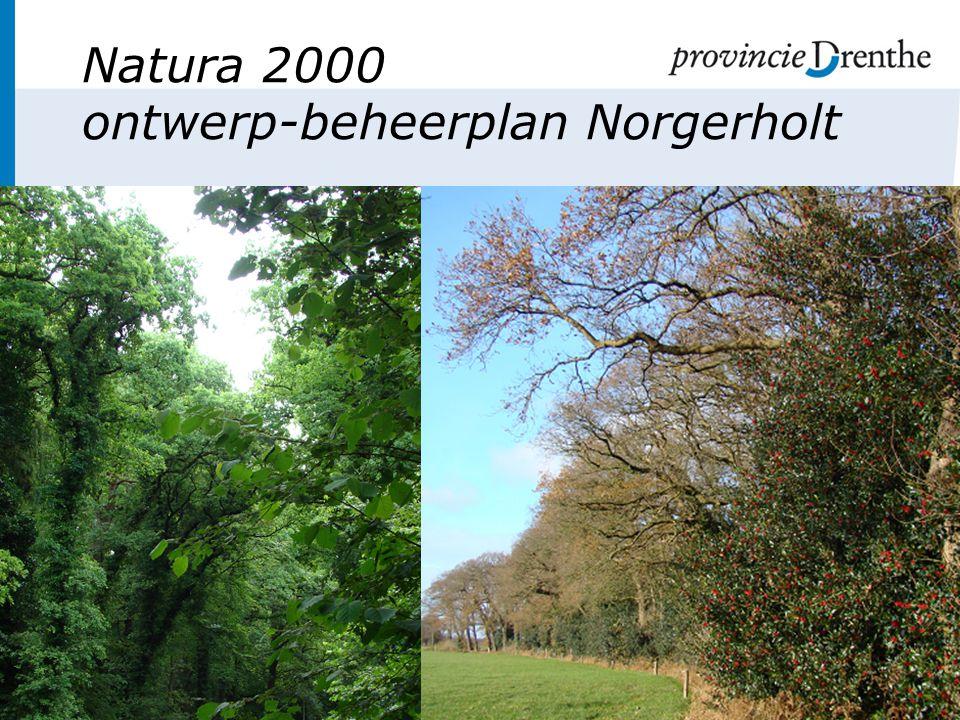 Natura 2000 ontwerp-beheerplan Norgerholt