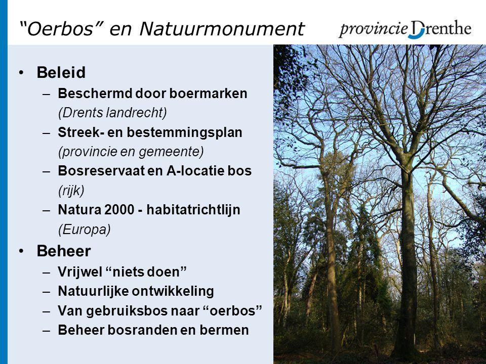 Oerbos en Natuurmonument •Beleid –Beschermd door boermarken (Drents landrecht) –Streek- en bestemmingsplan (provincie en gemeente) –Bosreservaat en A-locatie bos (rijk) –Natura 2000 - habitatrichtlijn (Europa) •Beheer –Vrijwel niets doen –Natuurlijke ontwikkeling –Van gebruiksbos naar oerbos –Beheer bosranden en bermen