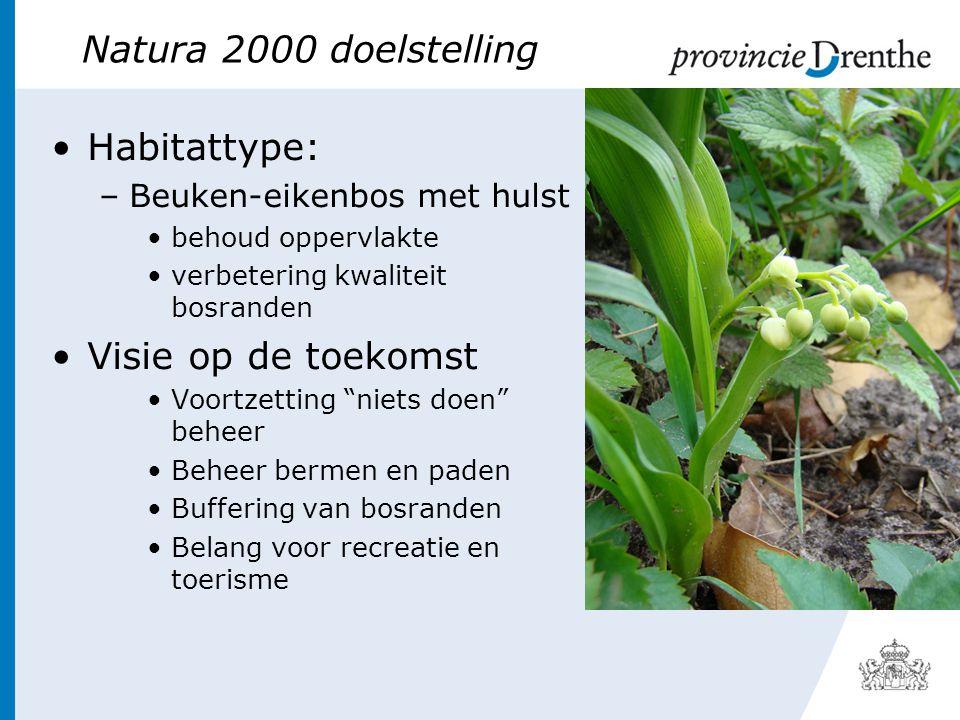 Natura 2000 doelstelling •Habitattype: –Beuken-eikenbos met hulst •behoud oppervlakte •verbetering kwaliteit bosranden •Visie op de toekomst •Voortzetting niets doen beheer •Beheer bermen en paden •Buffering van bosranden •Belang voor recreatie en toerisme