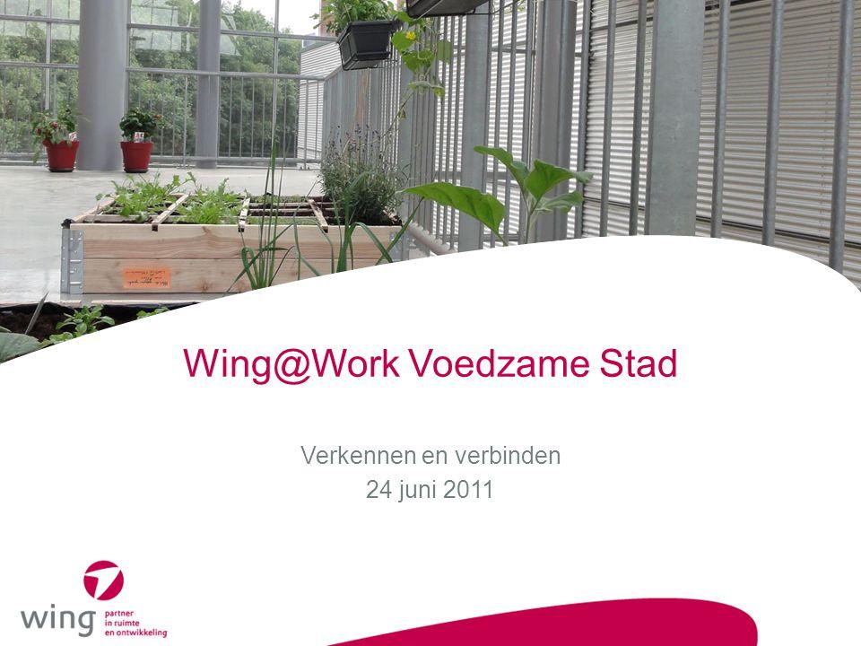 Wing@Work Voedzame Stad Verkennen en verbinden 24 juni 2011