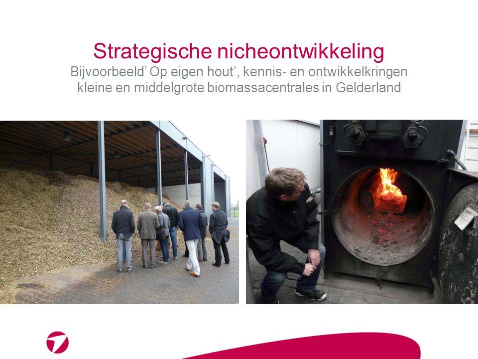 Strategische nicheontwikkeling Bijvoorbeeld' Op eigen hout', kennis- en ontwikkelkringen kleine en middelgrote biomassacentrales in Gelderland