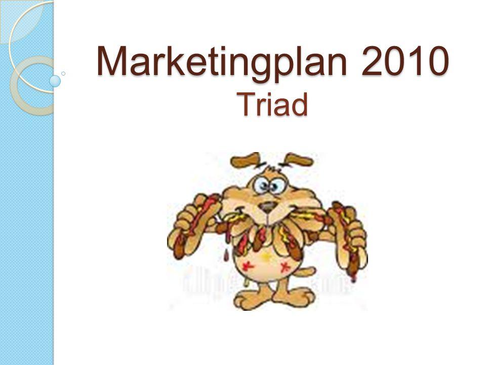 Marketingplan 2010 Triad