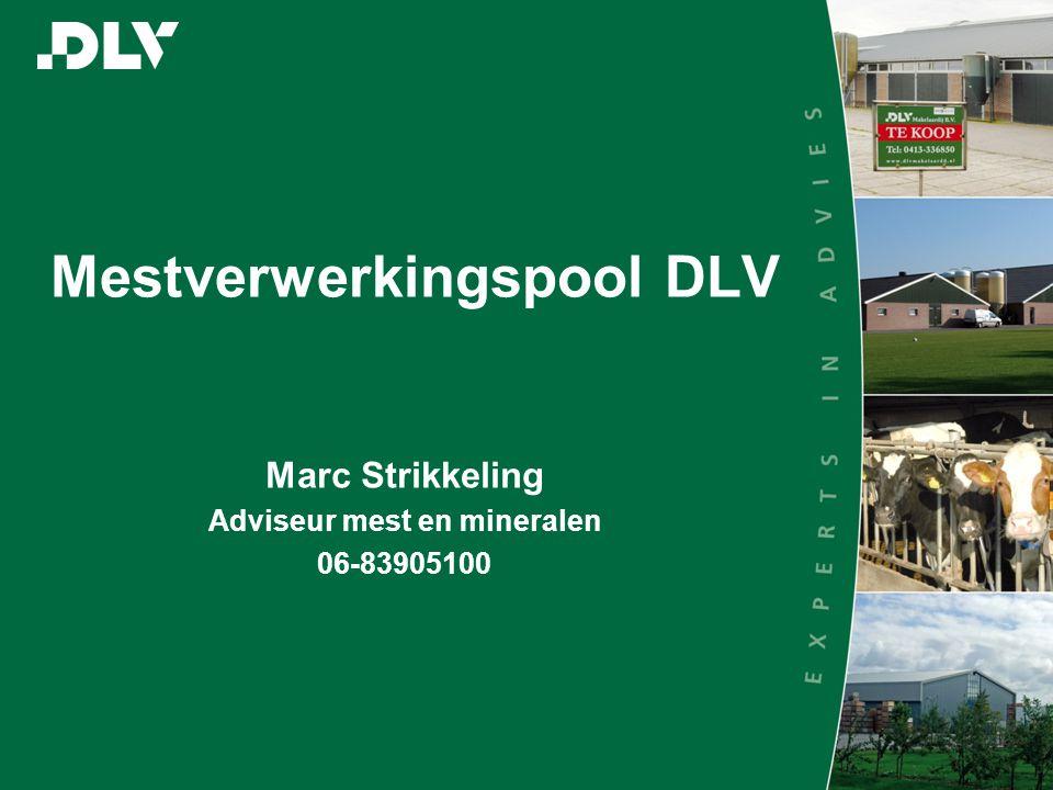 Mestverwerkingspool DLV Marc Strikkeling Adviseur mest en mineralen 06-83905100