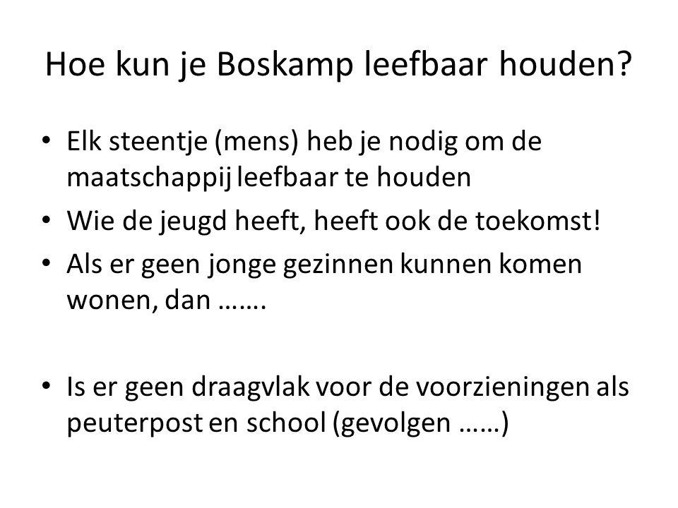 Hoe kun je Boskamp leefbaar houden? • Elk steentje (mens) heb je nodig om de maatschappij leefbaar te houden • Wie de jeugd heeft, heeft ook de toekom