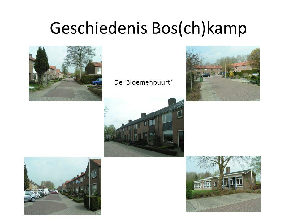 Geschiedenis Bos(ch)kamp Ged. Weth. Boerkampweg, Vennemanshoek, Weth. Vlaskamplaan en Blomstraat