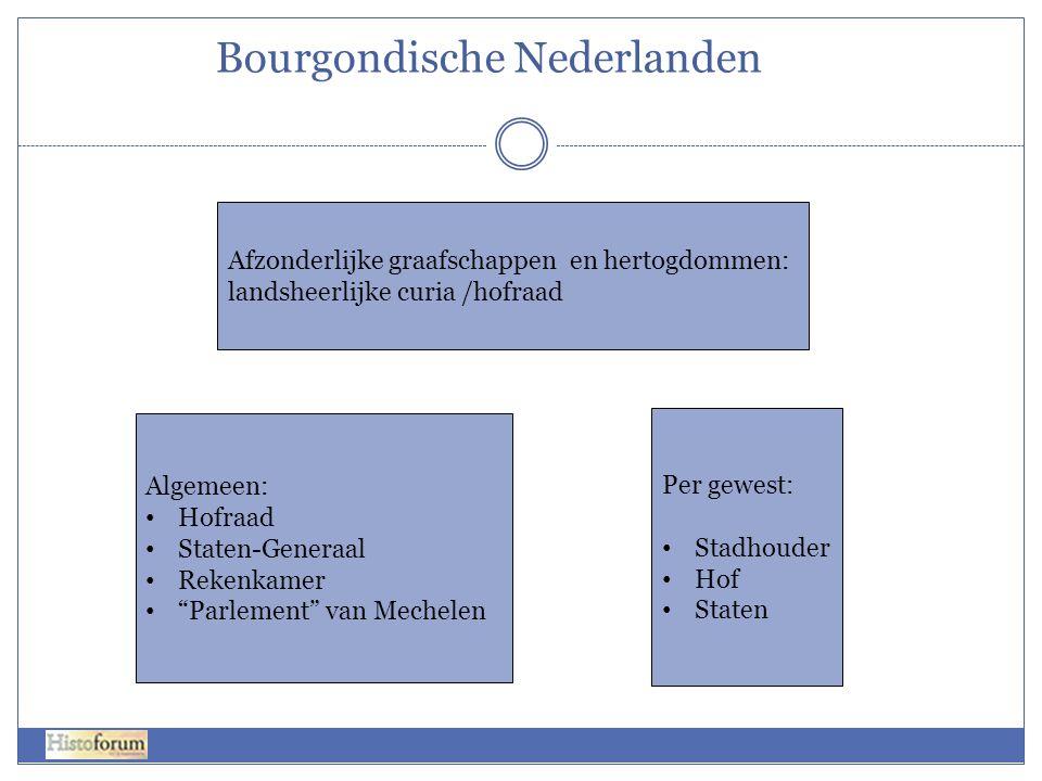 Bourgondische Nederlanden Afzonderlijke graafschappen en hertogdommen: landsheerlijke curia /hofraad Algemeen: • Hofraad • Staten-Generaal • Rekenkame