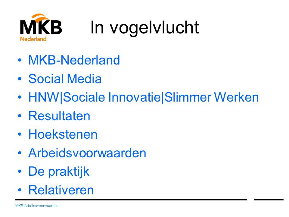 MKB-Arbeidsvoorwaarden In vogelvlucht •MKB-Nederland •Social Media •HNW|Sociale Innovatie|Slimmer Werken •Resultaten •Hoekstenen •Arbeidsvoorwaarden •De praktijk •Relativeren