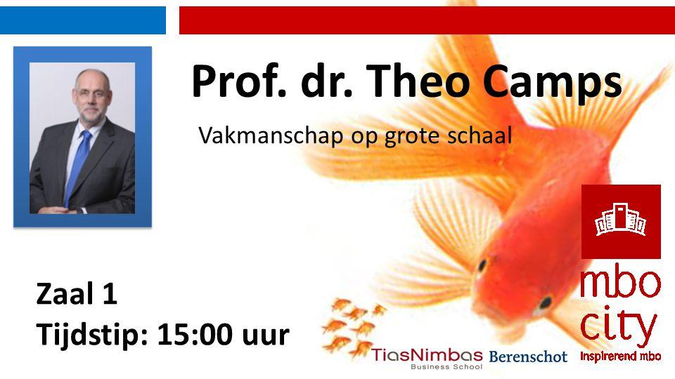 Zaal 1 Tijdstip: 15:00 uur Vakmanschap op grote schaal Prof. dr. Theo Camps