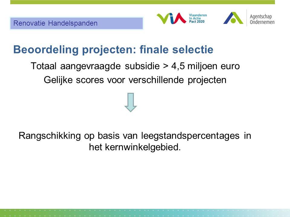 Beoordeling projecten: finale selectie Totaal aangevraagde subsidie > 4,5 miljoen euro Gelijke scores voor verschillende projecten Rangschikking op basis van leegstandspercentages in het kernwinkelgebied.
