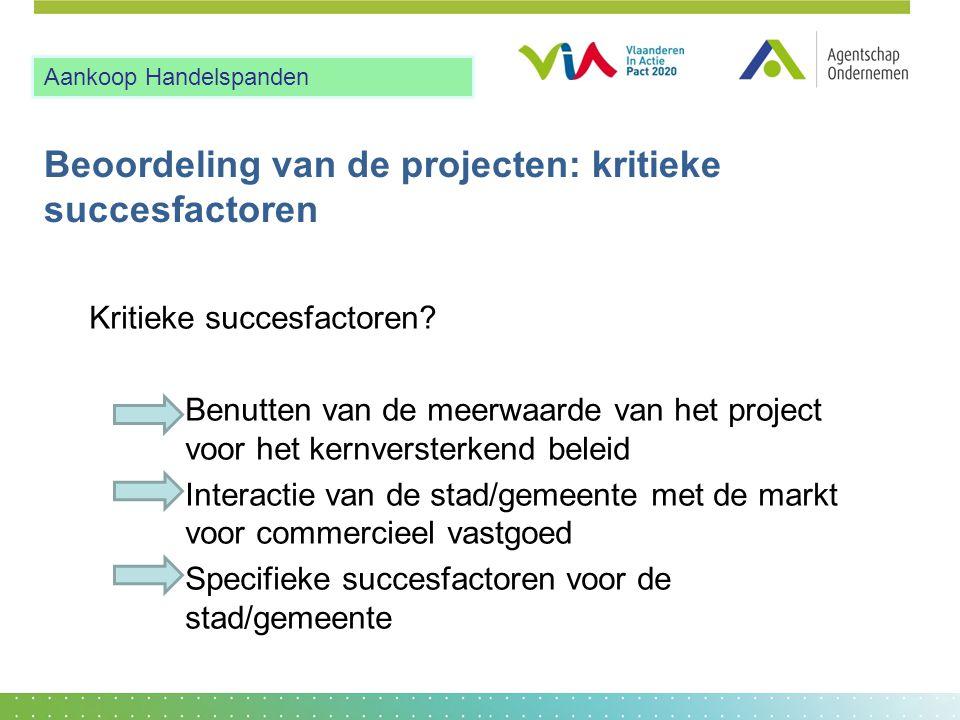 Beoordeling van de projecten: kritieke succesfactoren Kritieke succesfactoren.