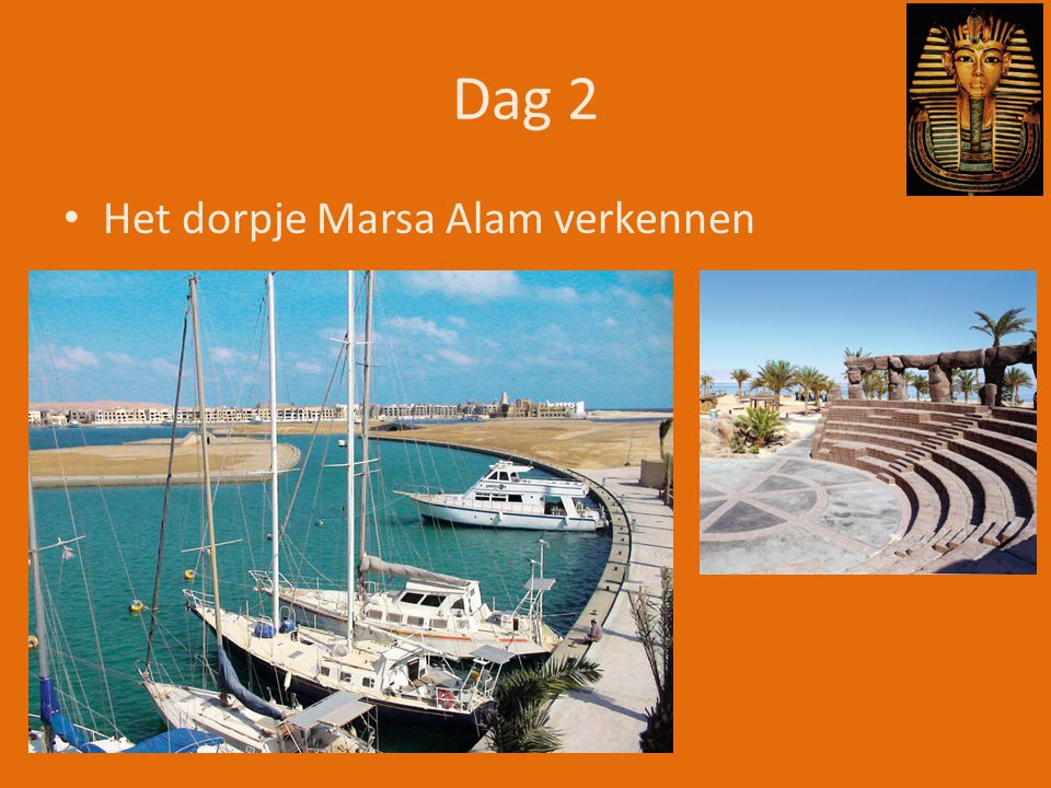 Dag 3 • Snorkelen, €58 http://www.memphistours.com/Egypt/Excursions/Marsa-Alam-Day-Tours/Day-Trip-to-Luxor-from-Marsa-Alam
