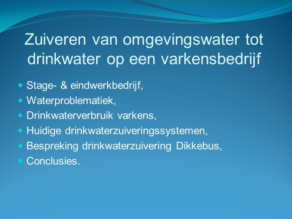 Stage- & eindwerkbedrijf: Verhoeyen-Bostijn bvba  Kweken van water- en oeverplanten:  vermeerderingswijze,  potkeuze,  opkweek,  verkoop.