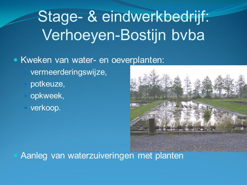 Waterproblematiek  Landbouw 9 %  Leidingwater  10 miljoen m³/ jaar  te duur  Grondwater:  52 miljoen m³/ jaar  geen grondwatervergunningen,  vergunde op te pompen volumes verminderen,  grondwaterwinningsdiepte verhogen,  verhogen grondwaterheffingen.