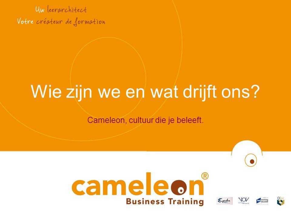Wie zijn we en wat drijft ons Cameleon, cultuur die je beleeft.