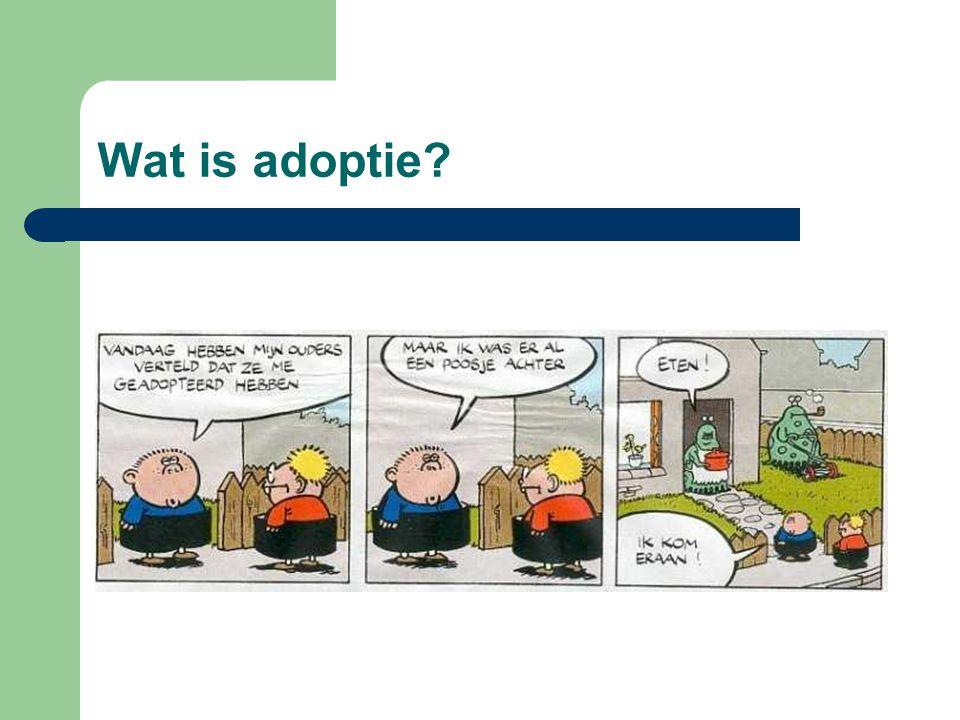 Wat is adoptie?