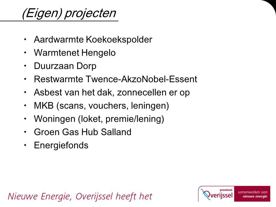 (Eigen) projecten  Aardwarmte Koekoekspolder  Warmtenet Hengelo  Duurzaan Dorp  Restwarmte Twence-AkzoNobel-Essent  Asbest van het dak, zonnecell