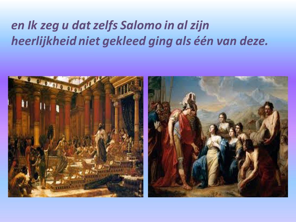 en Ik zeg u dat zelfs Salomo in al zijn heerlijkheid niet gekleed ging als één van deze.