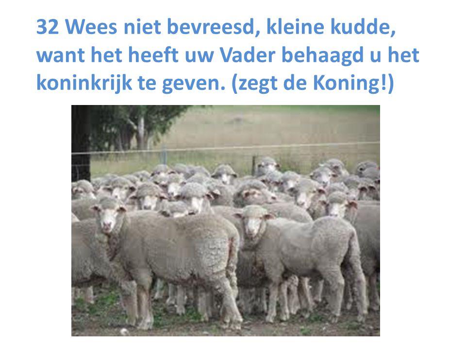 32 Wees niet bevreesd, kleine kudde, want het heeft uw Vader behaagd u het koninkrijk te geven. (zegt de Koning!)