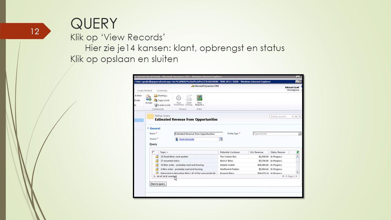 QUERY Klik op 'View Records' Hier zie je14 kansen: klant, opbrengst en status Klik op opslaan en sluiten 12