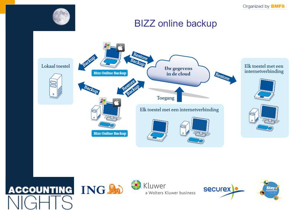 BIZZ online backup