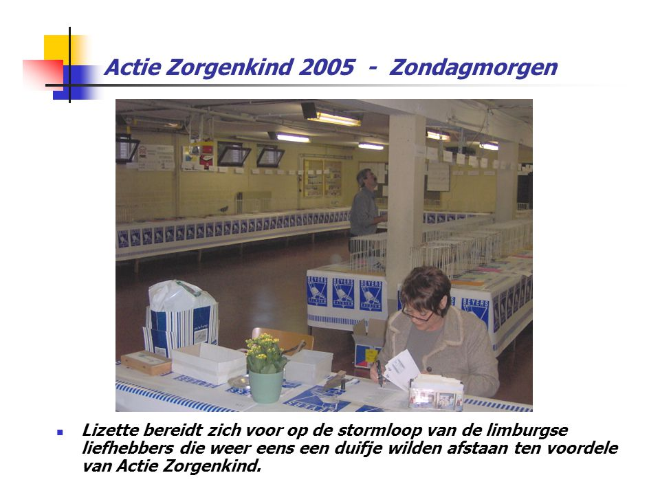 Actie Zorgenkind 2005 - Zondagmorgen  Lizette bereidt zich voor op de stormloop van de limburgse liefhebbers die weer eens een duifje wilden afstaan ten voordele van Actie Zorgenkind.
