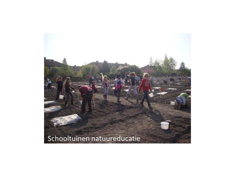 Schooltuinen natuureducatie