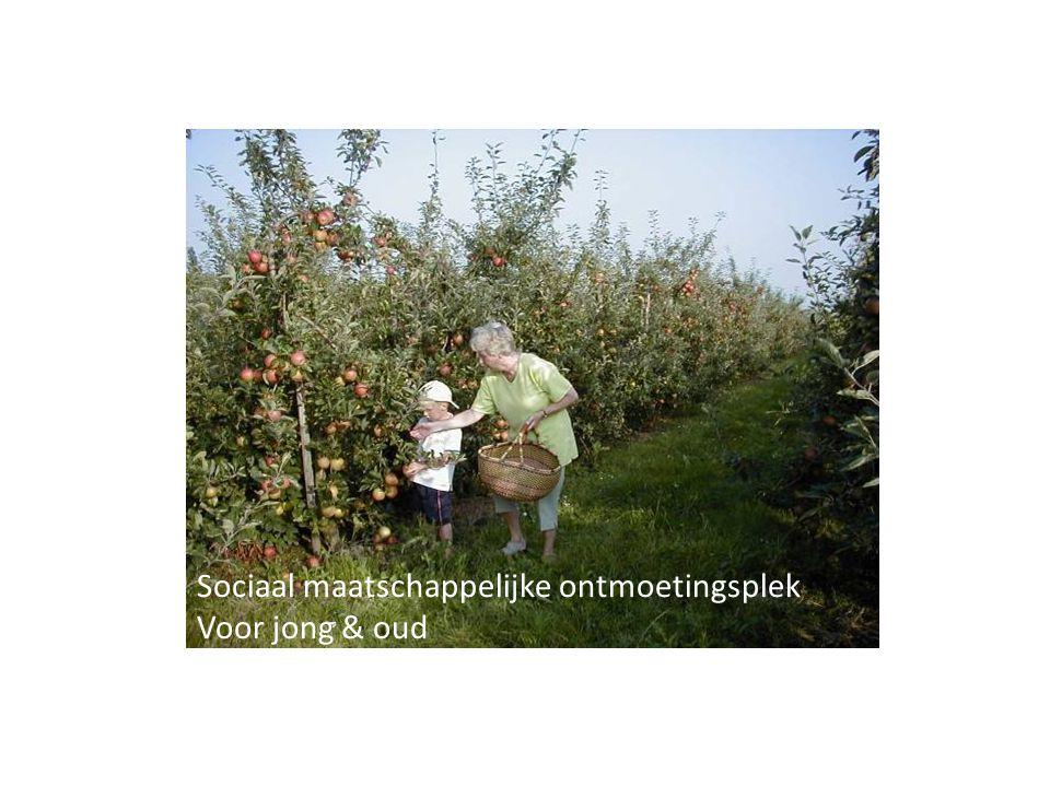Sociaal maatschappelijke ontmoetingsplek Voor jong & oud