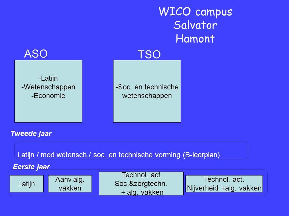 Eerste jaar Tweede jaar WICO campus Salvator Hamont Latijn / mod.wetensch./ soc.